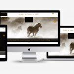 Création de site internet de type vitrine pour un cabinet d'hypnothérapie - Vue ordinateur portable 17 pouces
